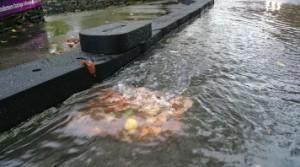 Flexible Flood Defence Blocks diverting flood water